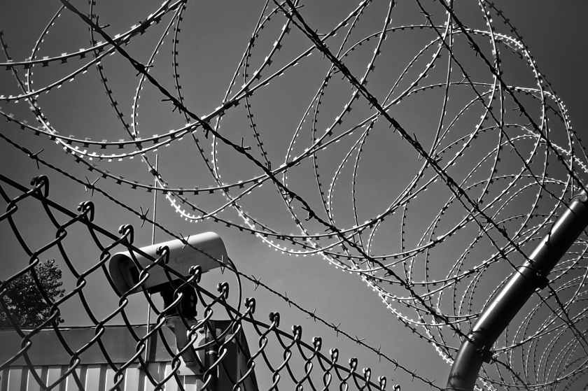 abstract barbed wire black white black and white